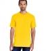 51 H000 Hammer Short Sleeve T-Shirt DAISY